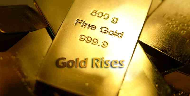 gold-price-rises