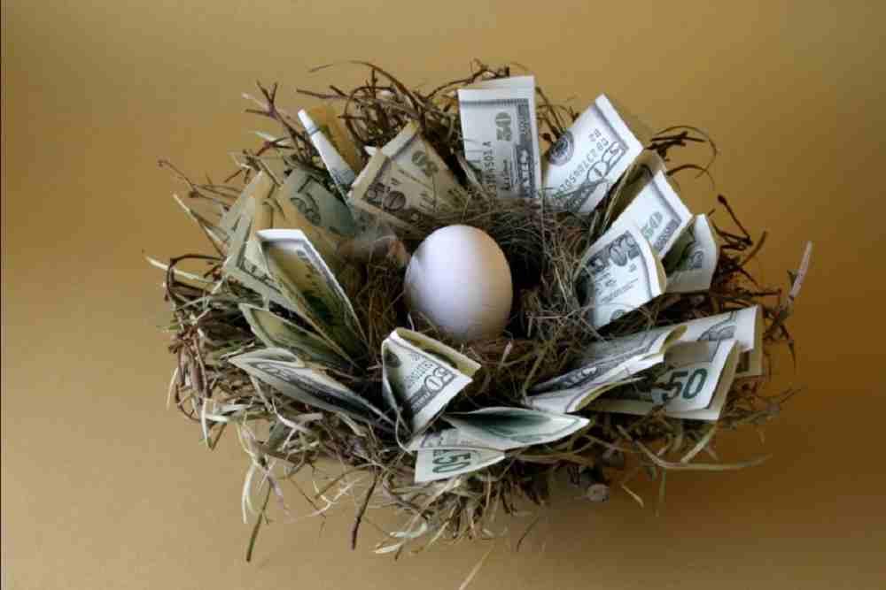 egg-money